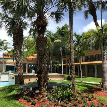 Miami Jewish Health Design By Nature Landscaping And